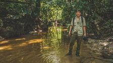 Anders Lundin på Borneo.