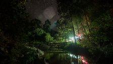 Stjärnklar natt på Borneo.
