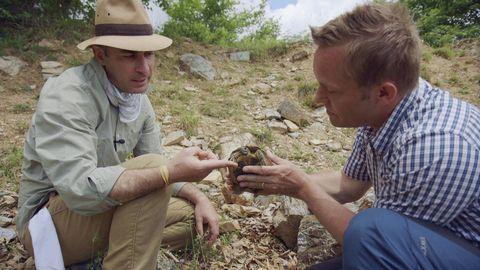 Joakim Odelberg hittar en grekisk landsköldpadda.
