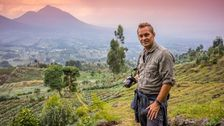 Joakim Odelberg i Volcans National Park i Rwanda.