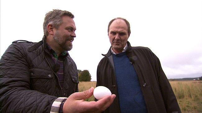 Mathias Andersson visar ett ägg för hönsbonden Pathrik Ahlsén.