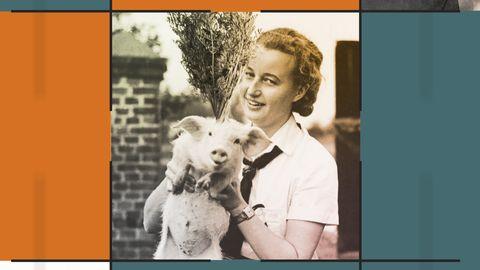 Grafik, inklusive bild på en kvinna med en gris som det växer morotsblast ur huvudet på.