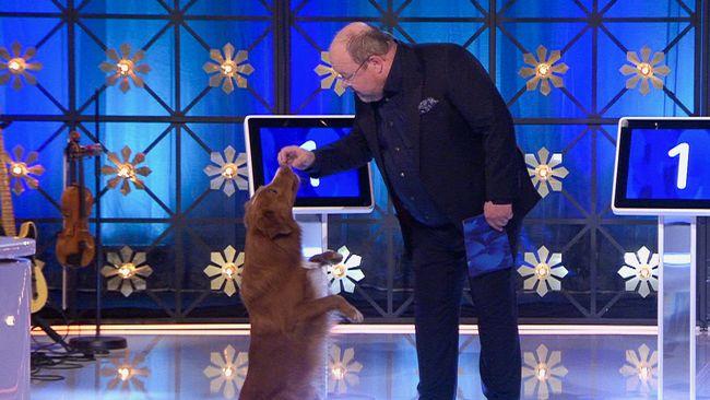 Kalle Moraeus får besök av hunden Lukas.