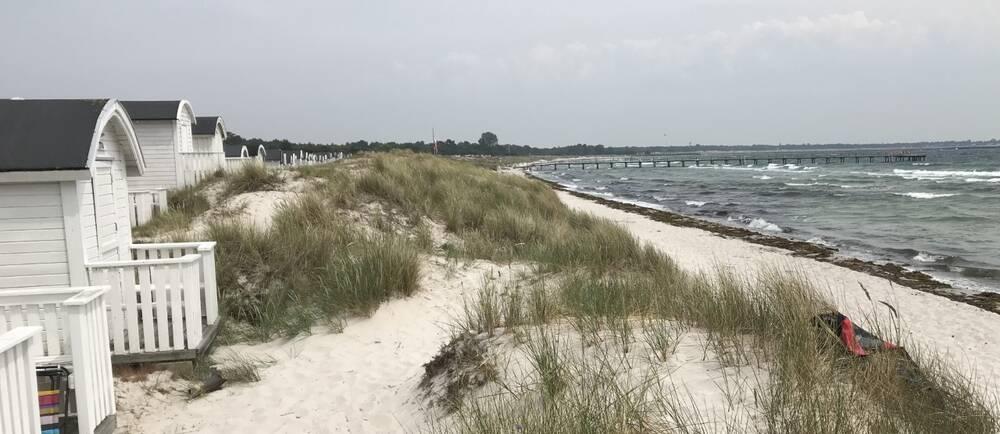 Det är blåsigt på stranden vid Ljunghusen i Skåne vid lunchtid på söndagen.