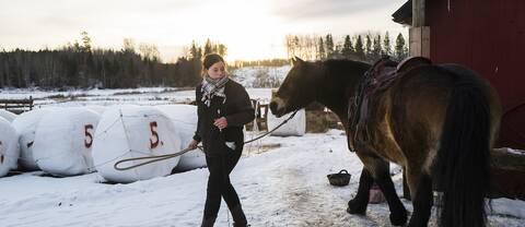 Biom och en häst
