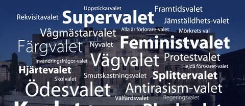 Några av väljarnas namnförslag för riksdagsvalet 2014.