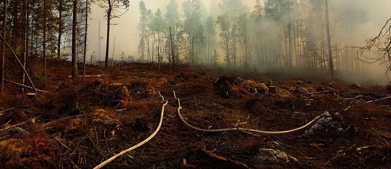 Tjock brandrök stiger från marken i skogen vid bränderna i Jämtlands län.