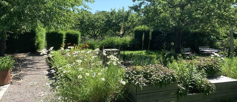 Rosendals trädgård.