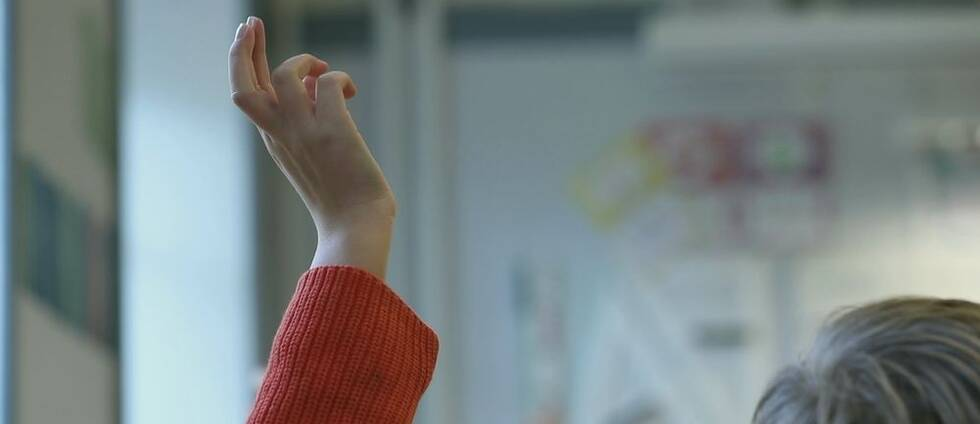 Skolverket vill förbättra likvärdighet