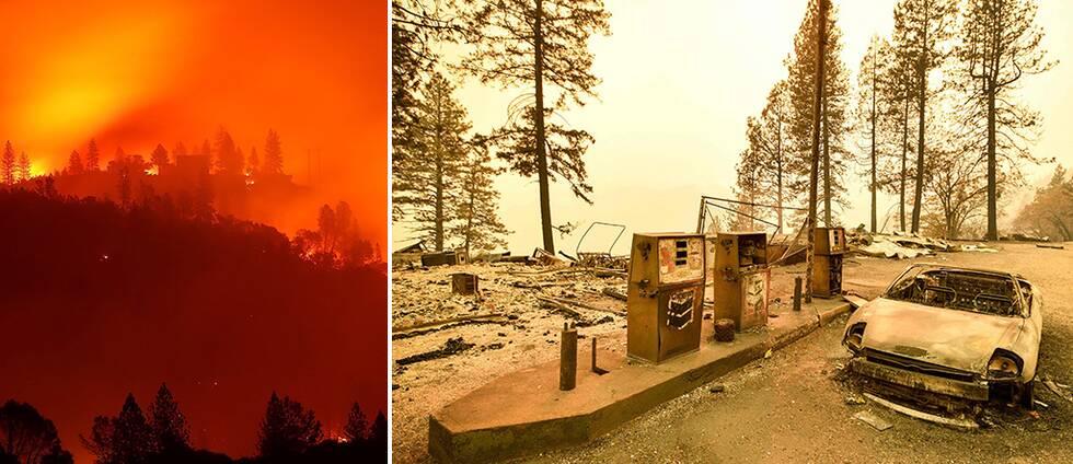 Minst 44 döda i USA-bränder