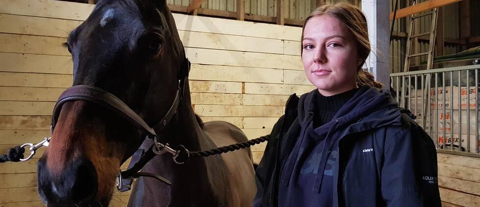 Närbild på häst och kvinna i stall