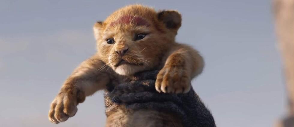 Inför nypremiären av Lejonnkungen har 30.000 personer skrivit under ett upprop där de anklagar Disney för kolonialism.