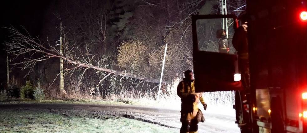 Träd som fallit och räddningstjänsten.