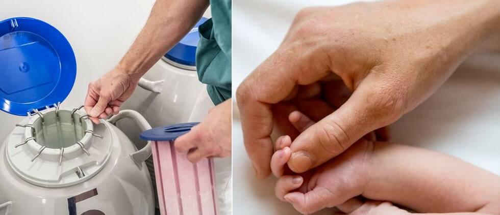 Läkare arbetar vid IVF-klinik och bild på kvinna som håller sin nyfödda bebis hand.