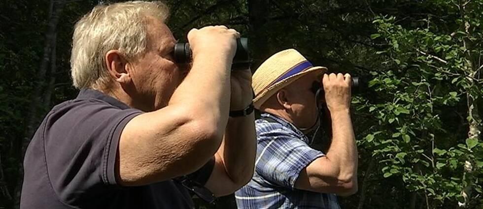 Gunnar Eklöv och Lars Arvidsson spanar med varsin kikare