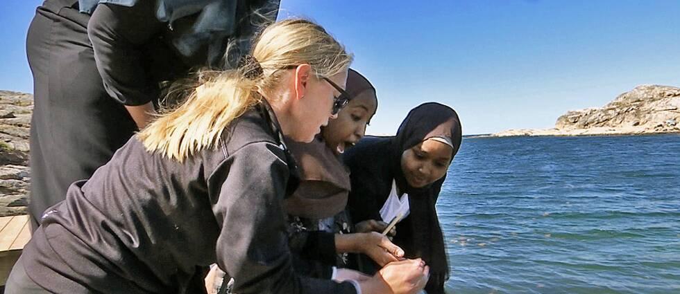 Fyra kvinnor på en brygga varav tre unga tjejer med slöja. En av tjejerna har en förskäckt min.