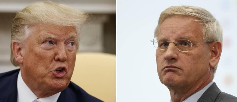 USA:s president Donald Trump och Sveriges tidigare statsminister och utrikesminister Carl Bildt.