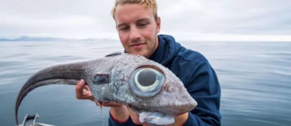 Oscar och hans kollega var på jakt efter hälleflundra när den här fisken var på hugget.