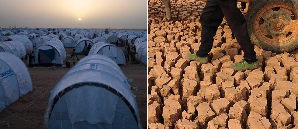 Röda Korset varnar i en ny rapport för att antalet människor i nöd riskerar att fördubblas.