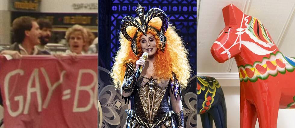 Protester för att friskförklara homosexualitet i Sverige, Cher, dalahäst.