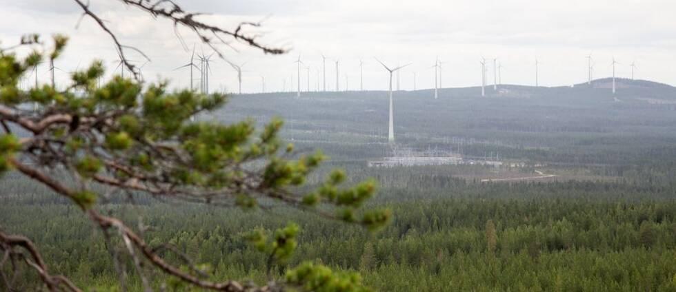 Vindkraftverk i skog.