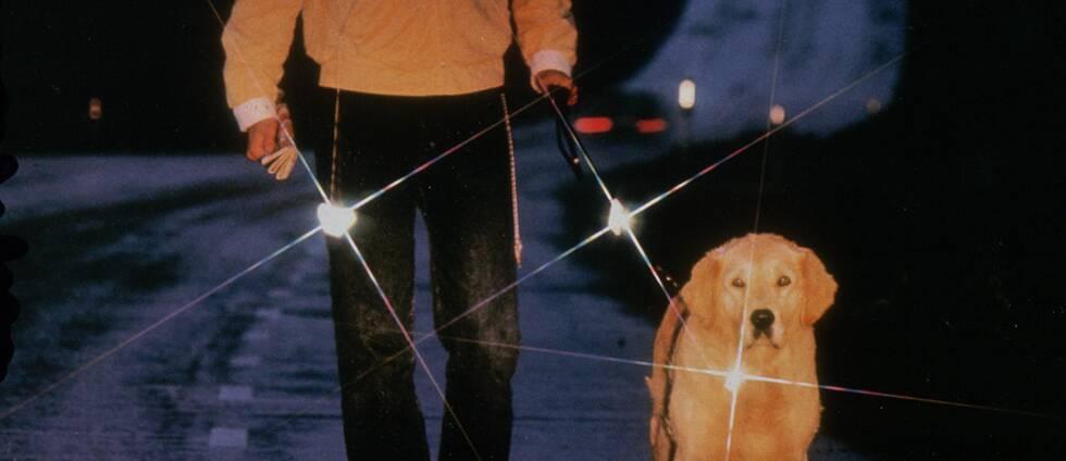 Husse och hund med reflex