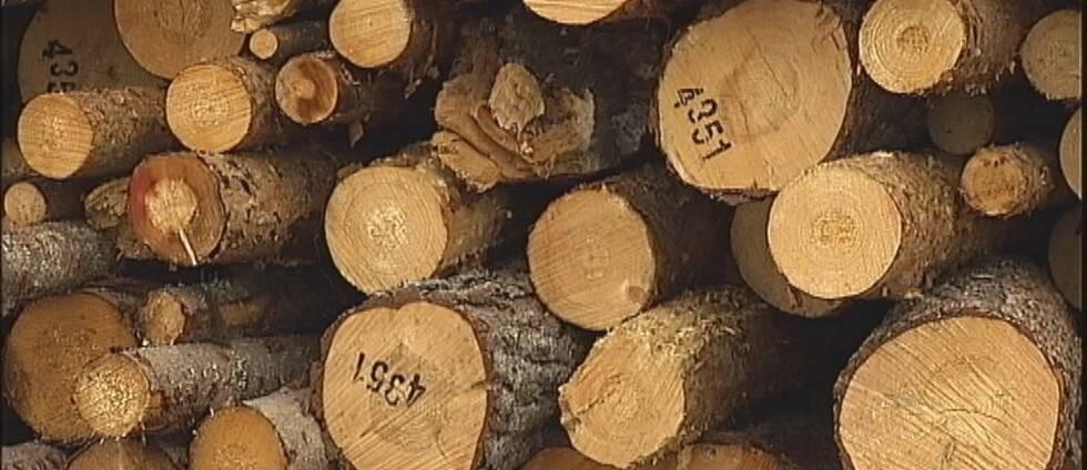 Timmerstockar på sågverk