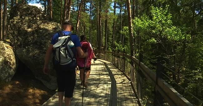 Utländska turister tillbaka i länets nationalparker