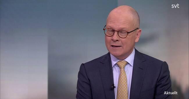Knutson: Sjöstedt vill inte avsätta Löfven