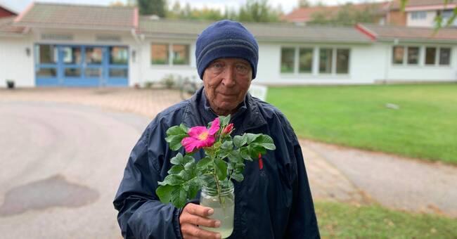 Sven, 83: Den här rosen är berättelsen om sex tuffa månader