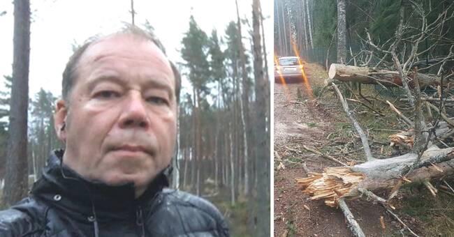 Flera nedblåsta träd och strömavbrott i Dalarna efter stormig natt