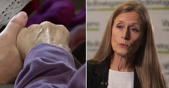 Vårdföretagarna: Sverige saknade coronastrategi för äldreomsorgen