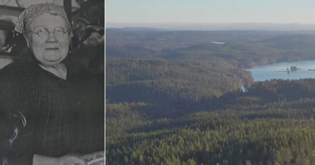 Därför ska Finnskogen bli ett världsarv