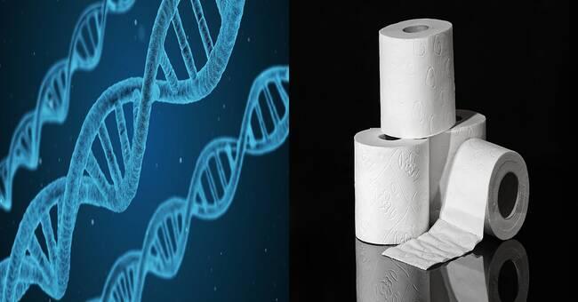 Den brittiska mutationen kan påverka virushalterna i avloppsvattnet
