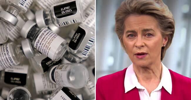 Ursula vonderLeyen: Underskattade industrins svårigheter