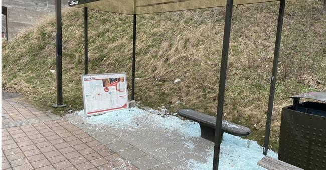 Ökad vandalisering av busskurer – igen