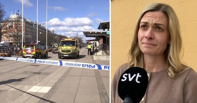Bilden av kvinnomordet i Linköping börjar klarna