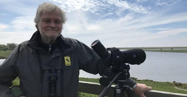 Rekordmånga fåglar vid årets fågelinventering i Skanör