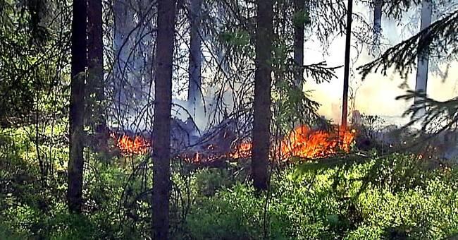 Eldningsförbud införs i hela länet