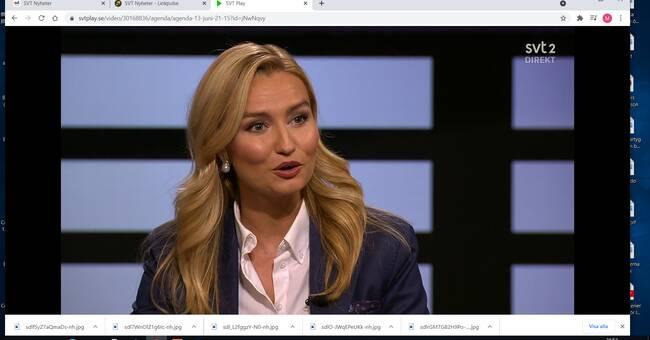 Busch: Vi är för förslaget – men röstar bort Löfven ändå