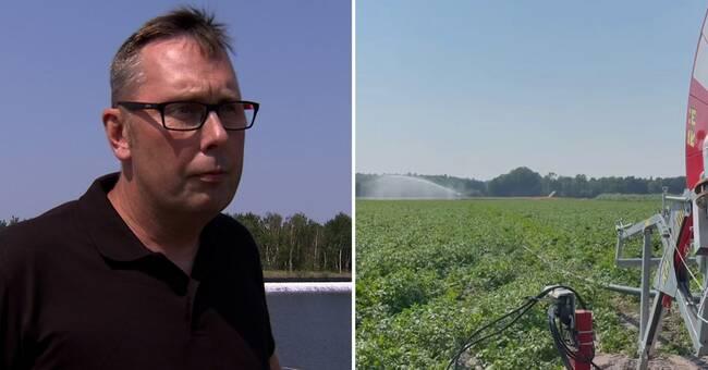 Vattenbrist på Gotland – tvingar fram kreativa lösningar