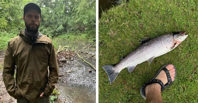"""Döda fiskar hittade i Råån – igen: """"Förtvivlad"""""""