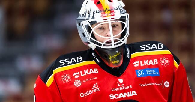 Tavla av stjärnmålvakt när Luleå tappade poäng