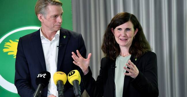 Green Party wants to increase capital taxes |  SVT News