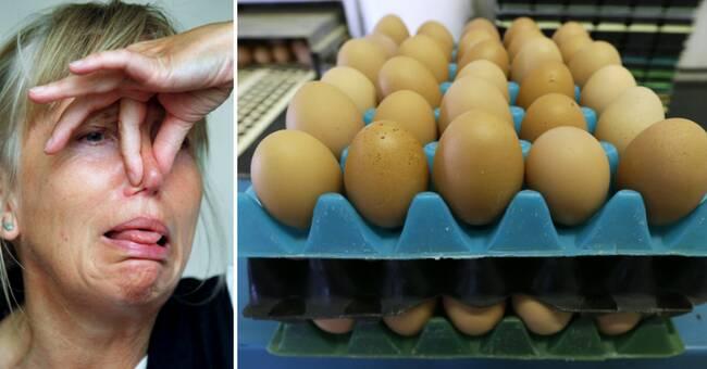 dålig i magen av ägg