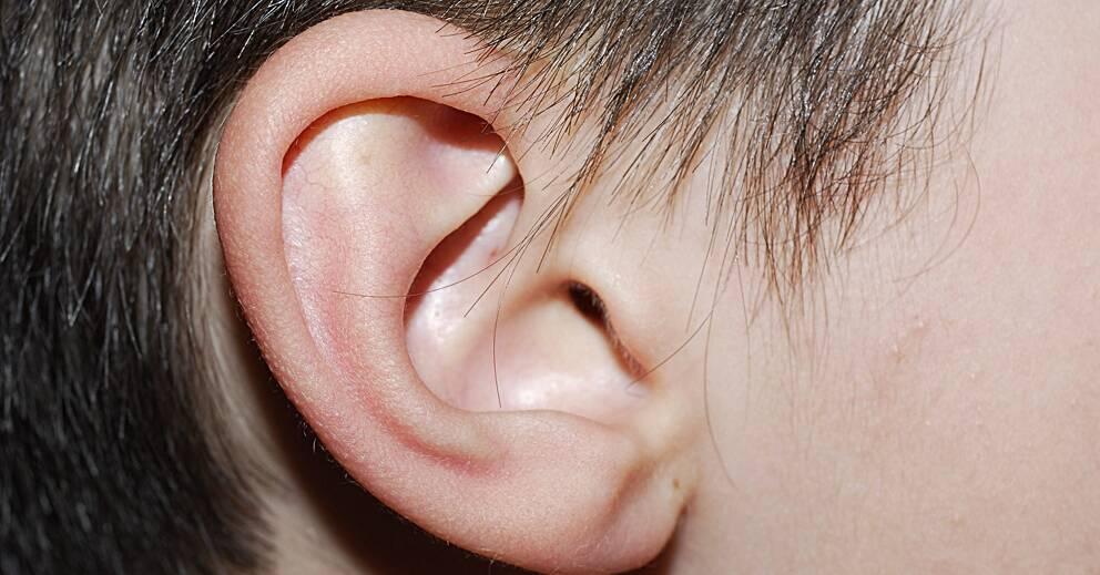 bakterier i örat