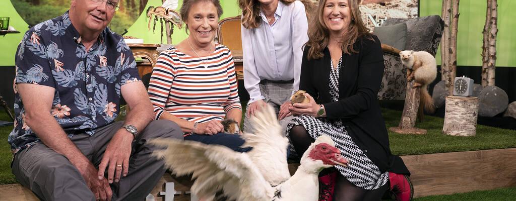 Bent Christensen, Kristina Snuttan Sundell , programledare Linda Olofsson och Marie Dacke