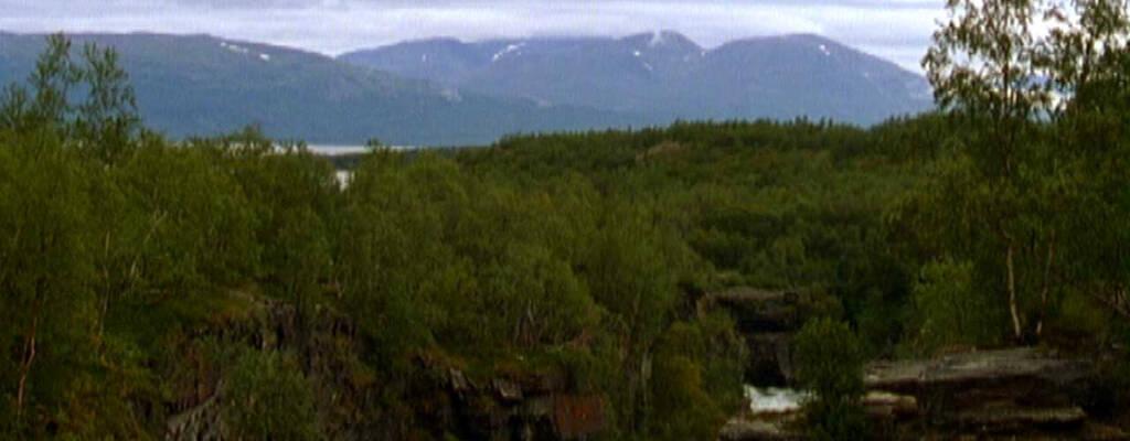 Naturen och bergen i Kiruna.