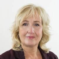 Erika Bjerström, utrikeskommentator