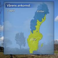 Årstidernas läge efter att temperaturdygnet den 7 april avslutats. Blått betyder vinter och gult betyder vår.